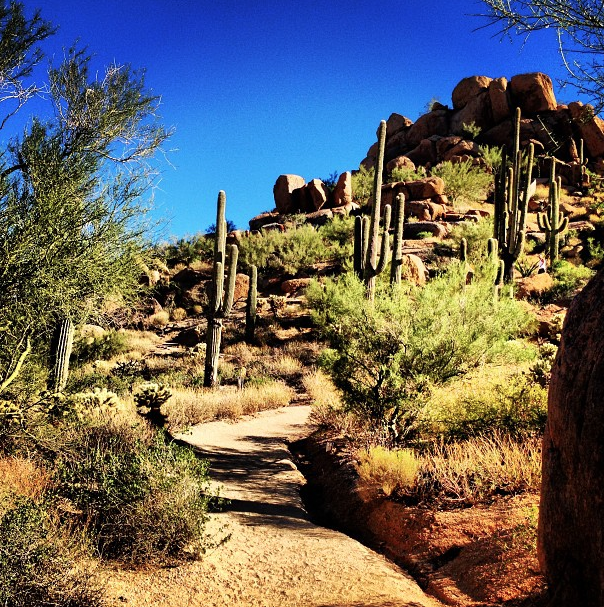 Hike the Breathtaking Pinnacle Peak Mountain in Scottsdale
